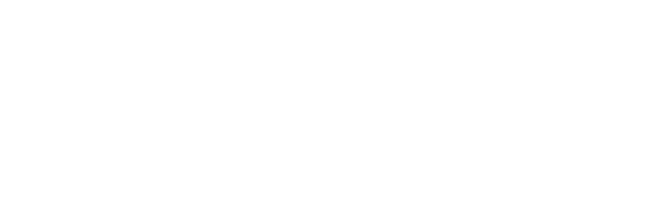 Stora Ord
